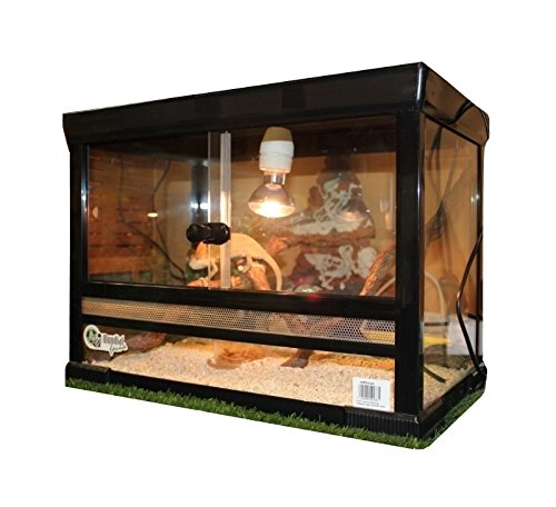 terrario-in-vetro-con-chiusura-disponibile-in-diverse-misure-per-rettili-anfibi-o-insetti-51x31x41hc