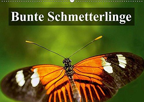 Bunte Schmetterlinge (Wandkalender 2019 DIN A2 quer): Bunte Nahaufnahmen exotischer Schmetterlingen (Geburtstagskalender, 14 Seiten ) (CALVENDO Tiere)