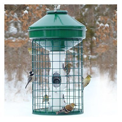 HD Caged Seed Feeder by Woodlink -