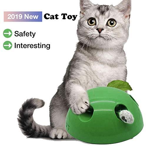 oshidede N Play Katzenspielzeug Lustige Kitty Pet Karneval Spiel körperlich stimuliert Spielen Kitty geistig Anti-Rutsch-Leichtgewicht Pet Spielzeug