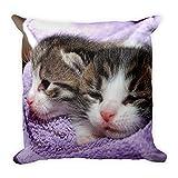 Süsse Katzen-Babies, großes, flauschiges Kissen 45x45 cm, handmade in EU