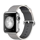 Apple Watch 38mm Edelstahlgehäuse mit Nylon-Armband Silber-perlgrau