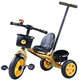 #5: Baybee Kiddo Tricycle with Parent Control