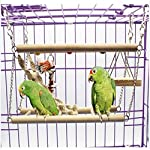 Gaddrt Animal Activity Toy Parrot Climbing Net Parrot Ladder Swing Budgie Hanging Toy Suspension Bridge Hammock Swing Ladder 10