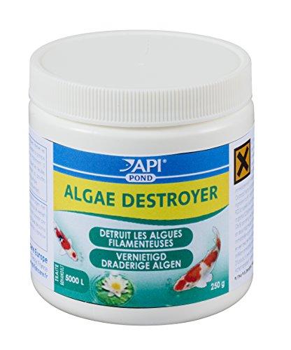 api-traitement-de-leau-pour-bassin-dagrement-algae-destroyer-250-g