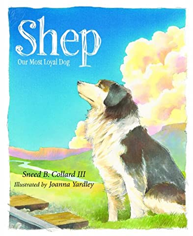 Shep: Our Most Loyal Dog (True Story)