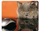 Edition Colibri Motiv 51 - Alfombrilla de ratón (caucho, antideslizante), diseño de gato y ratón de ordenador