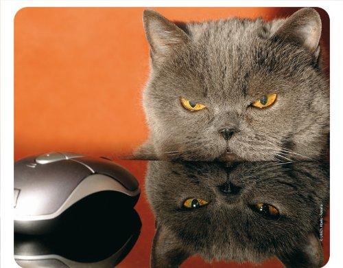 """Preisvergleich Produktbild """"KATZE UND MAUS - GRUMPY CAT"""" (MOTIV 51 - KATZEN): Lustiges Tier-Mousepad / Mauspad - Qualitäts-Mousepad aus extrem reissfestem Spezialkautschuk mit stark haftender Unterseite für optimalen Halt - kompatibel für alle Maustypen"""