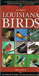 All about Louisiana Birds by Fred J., III Alsop (2003-10-01)