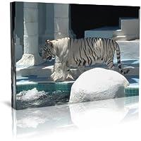 Stampa su tela con cornice, motivo: tigre bianca
