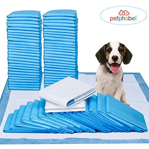 Dog Pads Super Absorbent Puppy Training Pads 100 Counts (61 x 58.4 cm)by Petphabet -