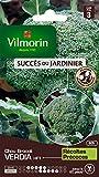 Vilmorin 3360743 Pack de Graines Chou Brocoli Verdia HF1...