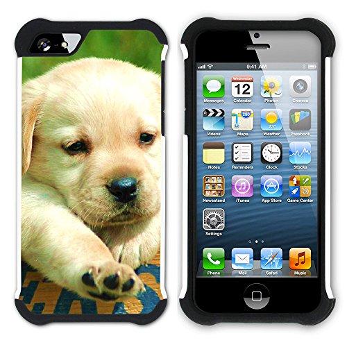 Graphic4You Labradorhund Labrador Retriever Hund Hündchen Tier Hart + Weiche Kratzfeste Hülle Case Schale Tasche Schutzhülle für Apple iPhone SE / 5 / 5S Design #6