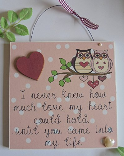 DottyBlueBells Love You Gift Wooden Keepsake Plaque Valentines (never knew how much love)