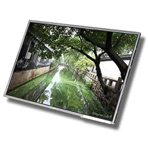 "Dalle LCD TFT / ?cran pour ordinateur portable ACER Aspire 6930ZG - 16"" - WXGA ( 1366x768 ) - Brillante"