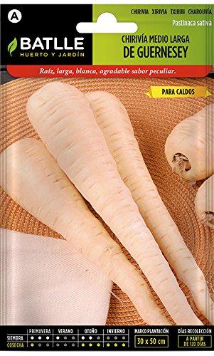 semi di ortaggi di batlle - parsnips bianchi a metà lunghezza - guernesey (4000 semi)