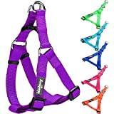 Blueberry Pet Step-in Harnesses Classic Solid No Pull Dog Harness Adjustable Made For Last - Dark Orchid, Nylon 1.5cm Small, Matching Collar & Lead Available Separately