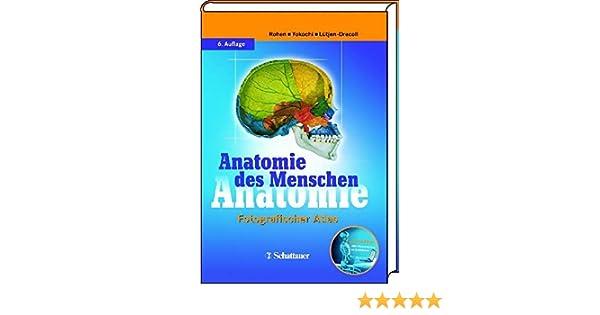 Anatomie des Menschen: Amazon.de: Johannes W Rohen, Chihiro Yokochi ...