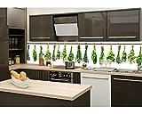 Küchenrückwand Folie selbstklebend KRÄUTER 260 x 60 cm | Klebefolie - Dekofolie - Spritzchutz für Küche | PREMIUM QUALITÄT