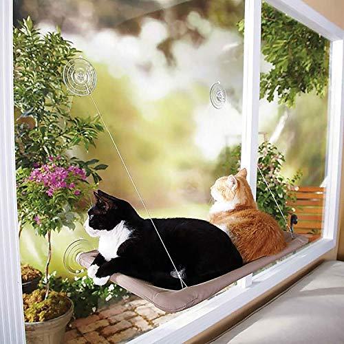 Zeagro Pet Sunshine Cama para Gato