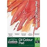 Winsor & Newton - Carta per colori ad olio - 10 fogli A4 da 230gr incollati su un lato