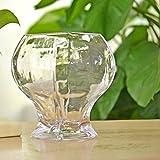 Vaso sferico in vetro Fish tank idroponici fiore vaso di vetro vaso floreale semplice e moderno-D