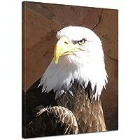 Adler über den Wolken  Leinwandbild Wanddeko Kunstdruck