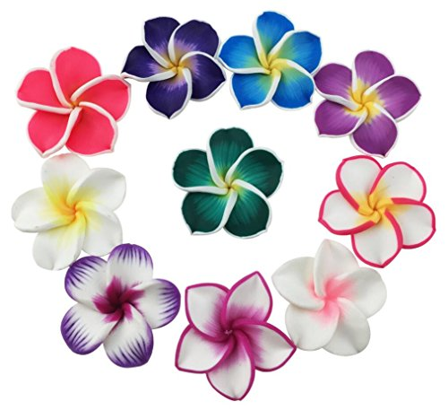 Flores hawaianas. Nombres y significados - Happy Hawaii