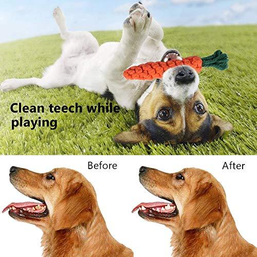 Habier Hundespielzeug, 6 Stück Kauspielzeug Hund Spielzeug Set Baumwollknoten Spielset Seil Interaktives Spielzeug für Kleine und Mittlere Hunde - 5
