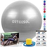 arteesol Palla Fitness, Palla Pilates Anti-Scoppio 45cm/55cm/65cm/75cm/85cm Palla da Ginnastica con Pompa Rapida per Fitness Yoga e Pilates