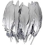 60 piezas de plumas de plata de ganso, para decoración del hogar,Disfraces Hats, bodas y proyectos de bricolaje. (I-60PCS)