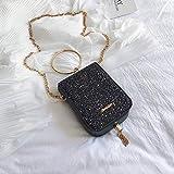 SimonX Borsa Da Donna Portatile Texture Bag Donna Versione Coreana Centinaio Di Catena Metallica Borsa A Tracolla Obliqua A Croce