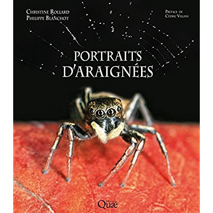 Portraits d'araignées (Beaux livres)