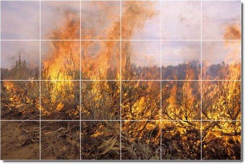 PAISAJES FOTO MURAL AZULEJOS MURAL 12  48X 182 88CM CON (24) 12X 12AZULEJOS DE CERAMICA