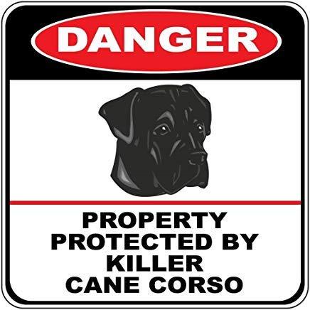 Kysd43Mill Danger Property Protected by Killer Cane Corso Hundekreuzschilder, Metall, lustige Neuheit, Aluminium-Dekoration, Hof, Geschenke, 30,5 x 30,5 cm (Cane Neuheit)