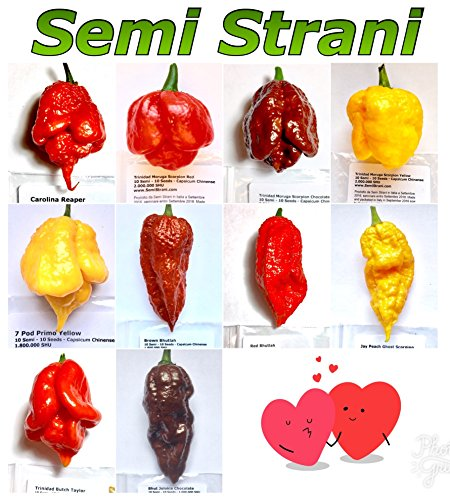 100 Graines De Les 10 Piment Chili Les Plus Piquant Du Monde, Collection Feu: Carolina Reaper, Trinidad Moruga Scorpion Red, Yellow Et Chocolate, 7 Pod Primo Yellow, Jay Peach Ghost Scorpion, Red Et Brown Bhutlah, Trinidad Butch Taylor, Bhut Jolokia Chocolate