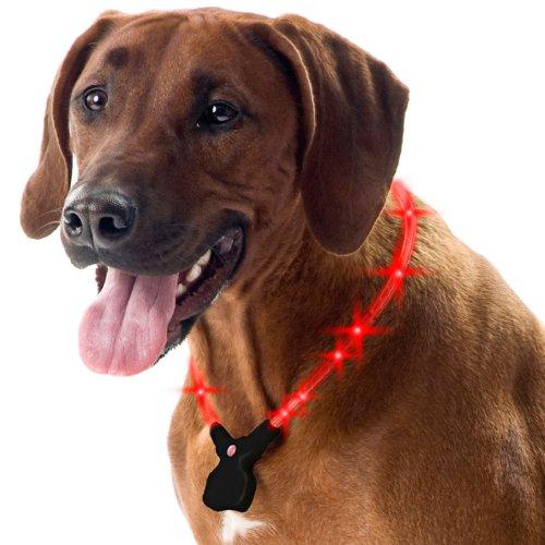 Wolters Hunde Leuchthalsband Nightshift blau 30-40 cm