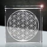 Blume des Lebens | 3D im Glas | harmonische Energie für dein Zuhause