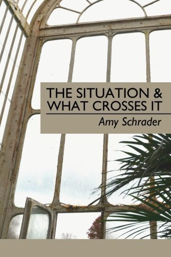 The Situation & What Crosses It by Amy Schrader (2014-03-13)