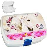 Unbekannt Lunchbox / Brotdose -  Pferd & Blumen  - BPA frei - mit Einsatz / herausnehmbaren Fach - Brotbüchse Küche Essen - Mädchen Pferde / Tiere Haustier rosa pink ..