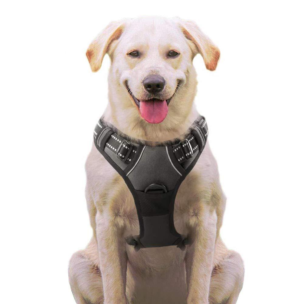 Eagloo Arnes de Perro Antitirones Cómodo Chaleco Ajustable Correa al Cuello y Pecho para Perros Pequeños