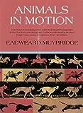Image de Animals in Motion