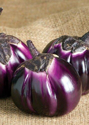 Tropica - Gemüse - Aubergine - Barbarella (Solanum melongena) - 5 Samen