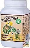 Altea NUTRICACTUS Concime Organico granulare per Piante grasse, Multicolore, 300 Grammi