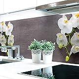 Küchenrückwand Orchideen Zweig Premium Hart-PVC 0,4 mm selbstklebend 340x51cm