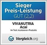 GeoVitalis Acaipulver, Acai Beerenpulver, 500g, Rohkostqualität!