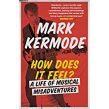 How Does It Feel?: A Life of Musical Misadventures