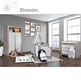 Babyzimmer Felix in akaziengrau 21 tlg. mit 2 türigem Kl. + Blossom in Weiß/Grau