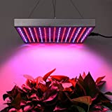 Amzdeal 10W LED Plant Grow Light, 225 LEDs with Red Blue Plant Grow Lamp for Indoor Garden Greenhouse Hydroponics Plants Flowers (310mm*310mm*35mm)
