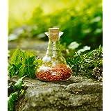 Nature's diseño Set: 3 x jarra Golden Mini versos